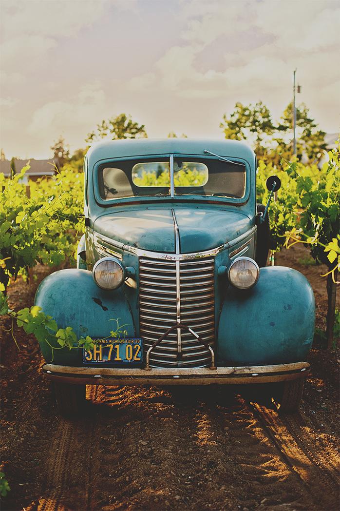 L'incroyable cave d'Olivier Hodebert - Arpenter les vignobles